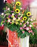 opening-flowers-13-btm