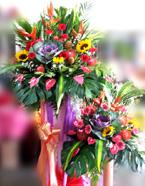 opening-flowers-19-btm