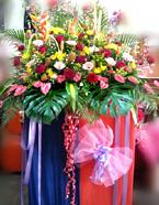opening-flowers-20-btm